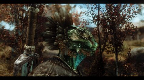 different Argonian feather textures 1 at Skyrim Special