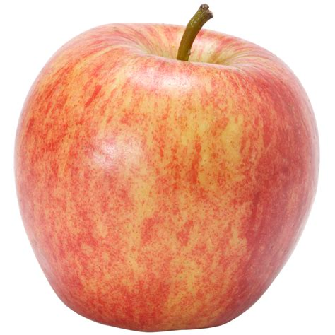 How to pick apples at the orchard   Marie Callender's
